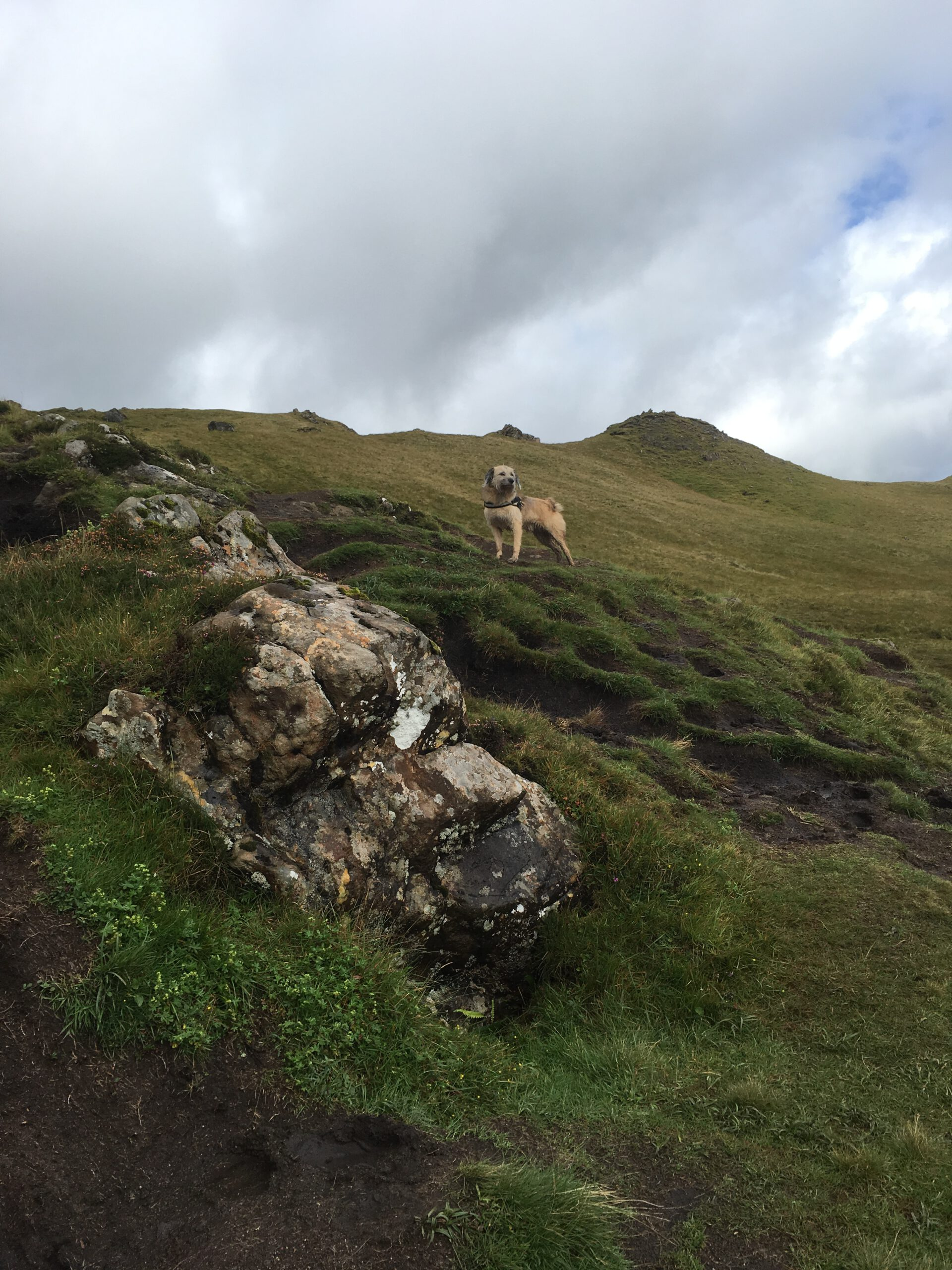 Isle of Skye mit Hund