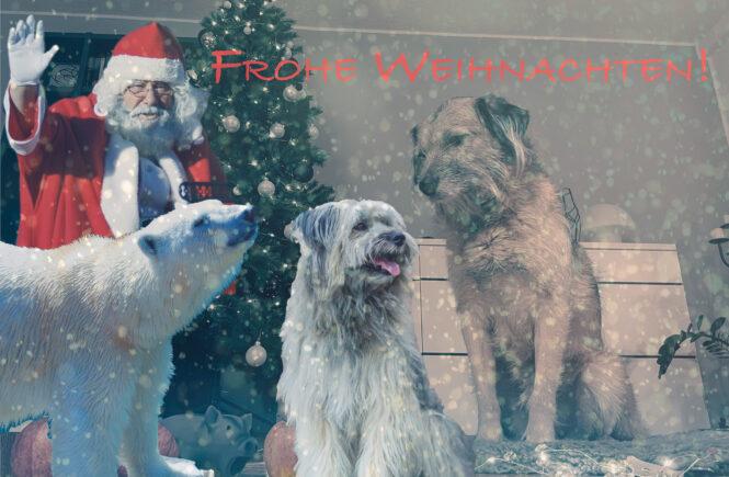 Weihnachten mit Boerne und Reva